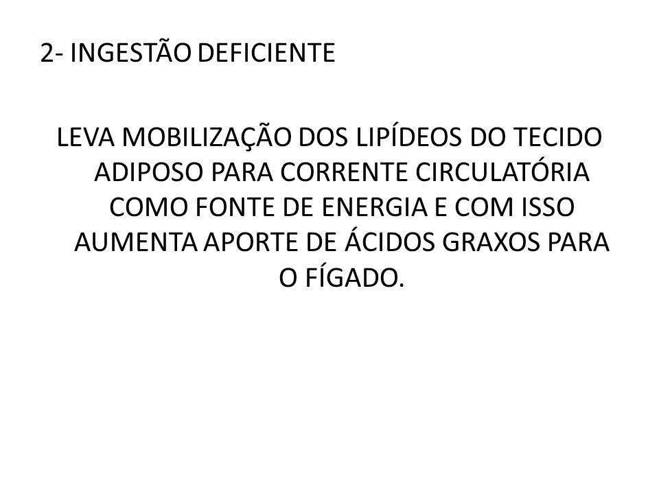2- INGESTÃO DEFICIENTE LEVA MOBILIZAÇÃO DOS LIPÍDEOS DO TECIDO ADIPOSO PARA CORRENTE CIRCULATÓRIA COMO FONTE DE ENERGIA E COM ISSO AUMENTA APORTE DE ÁCIDOS GRAXOS PARA O FÍGADO.