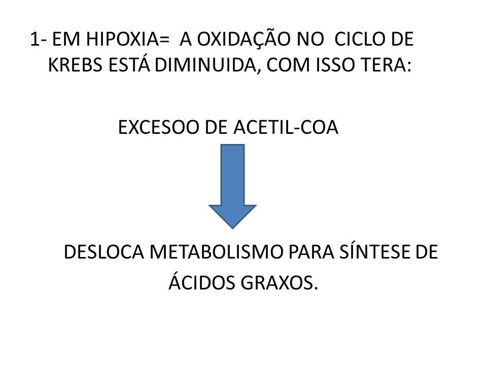 1- EM HIPOXIA= A OXIDAÇÃO NO CICLO DE KREBS ESTÁ DIMINUIDA, COM ISSO TERA: EXCESOO DE ACETIL-COA DESLOCA METABOLISMO PARA SÍNTESE DE ÁCIDOS GRAXOS.