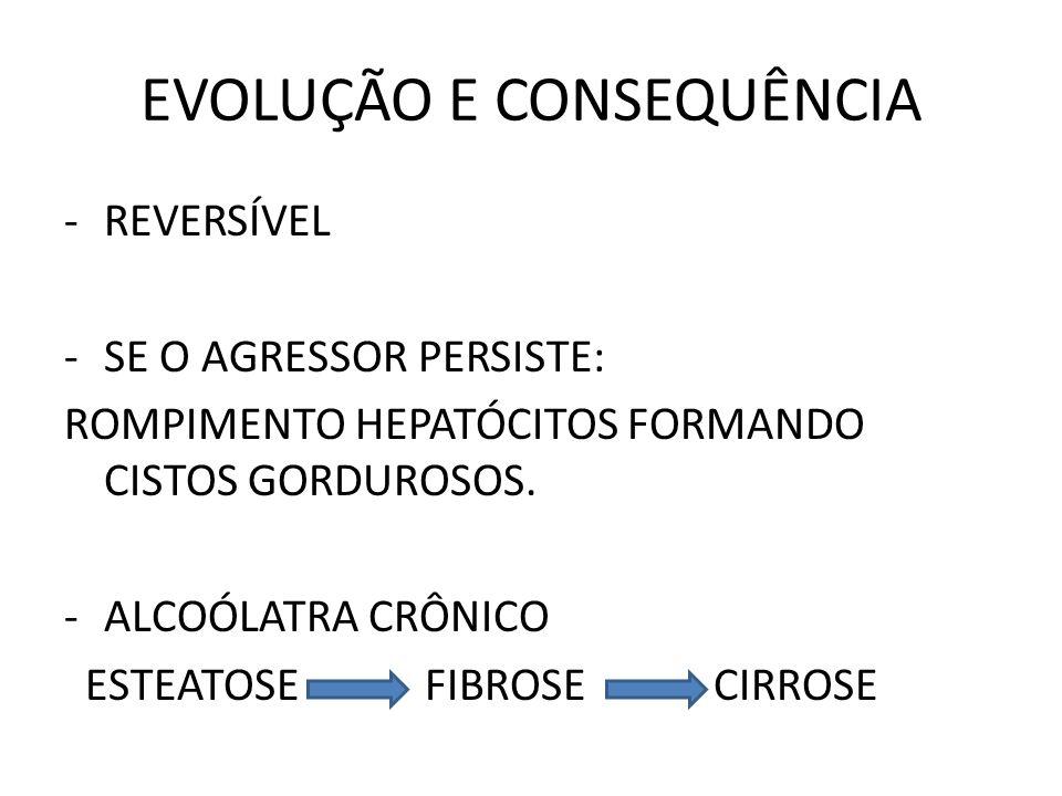 EVOLUÇÃO E CONSEQUÊNCIA