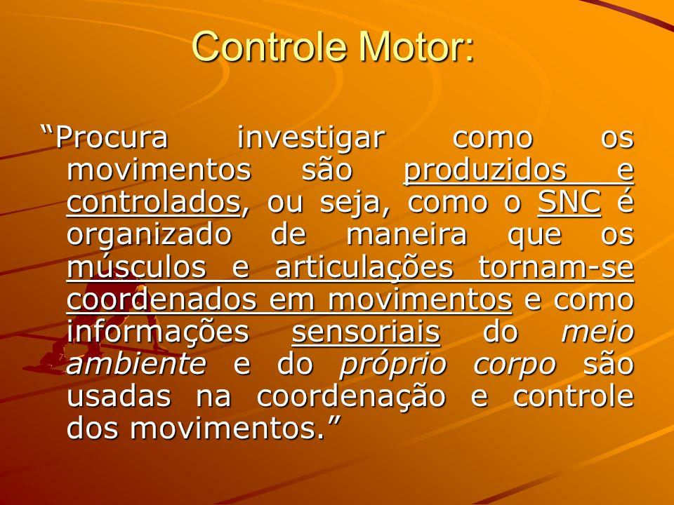 Controle Motor: