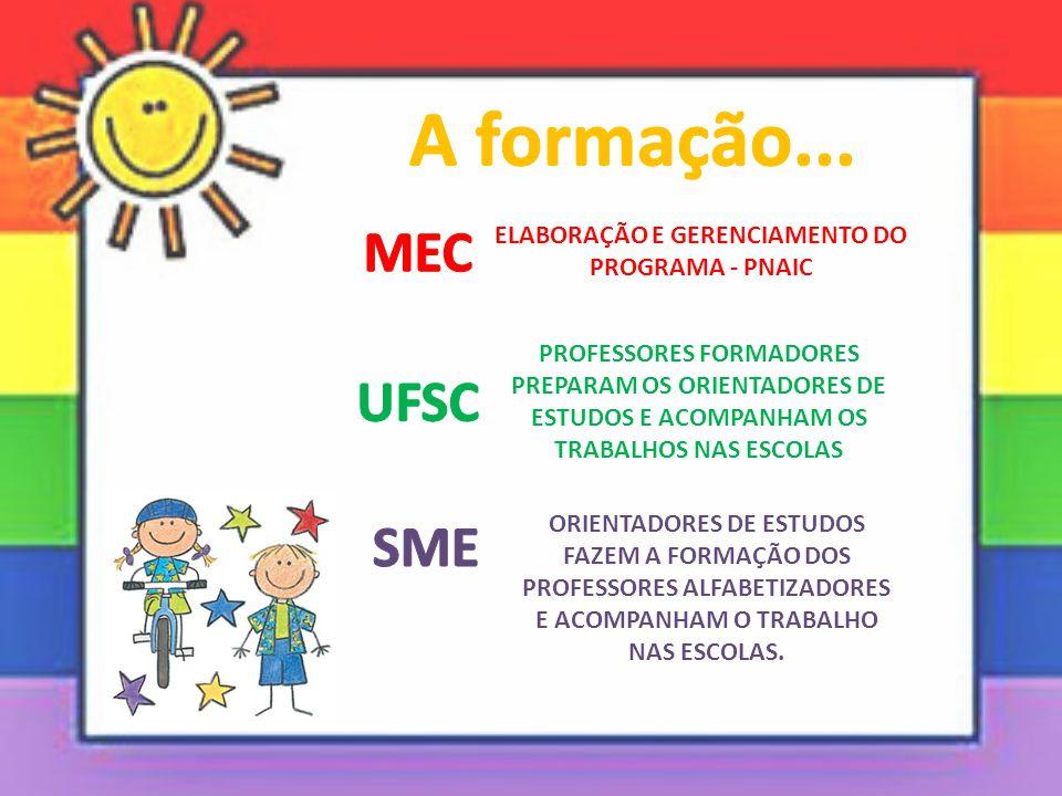 ELABORAÇÃO E GERENCIAMENTO DO PROGRAMA - PNAIC PROFESSORES FORMADORES