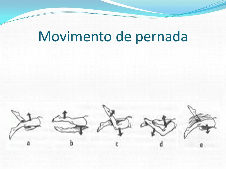 Movimento de pernada
