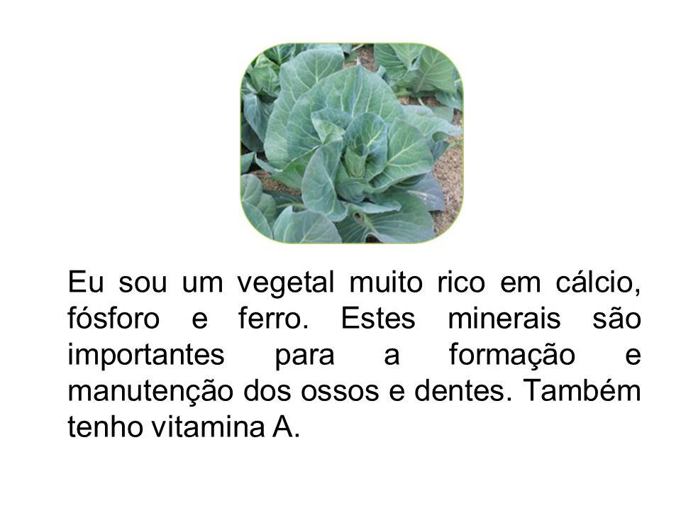 Eu sou um vegetal muito rico em cálcio, fósforo e ferro
