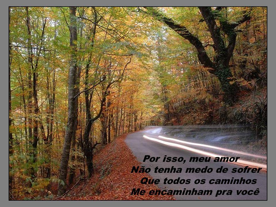 Por isso, meu amor Não tenha medo de sofrer Que todos os caminhos Me encaminham pra você