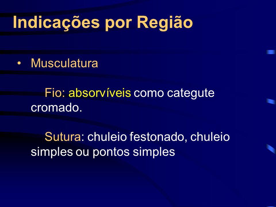 Indicações por Região Musculatura
