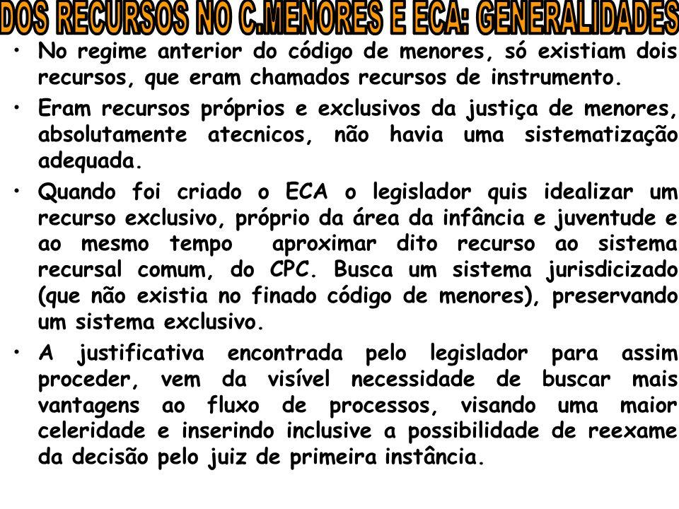 Artigo 33 eca