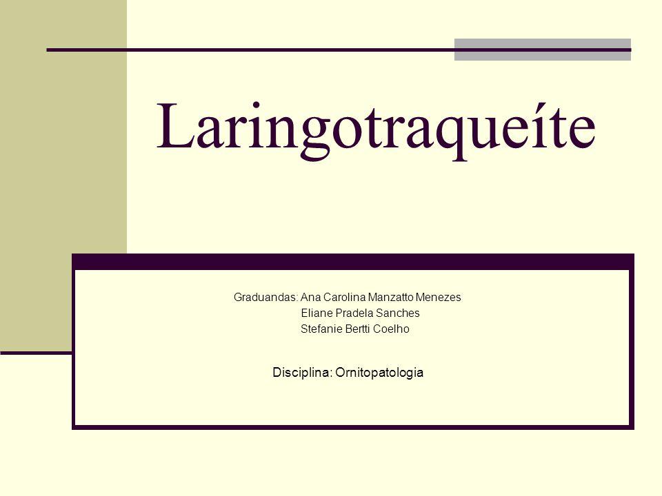 cornerstones of cost management 4th edition pdf