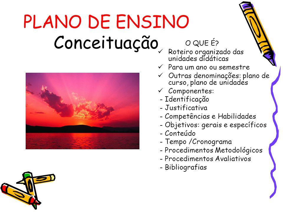 PLANO DE ENSINO Conceituação