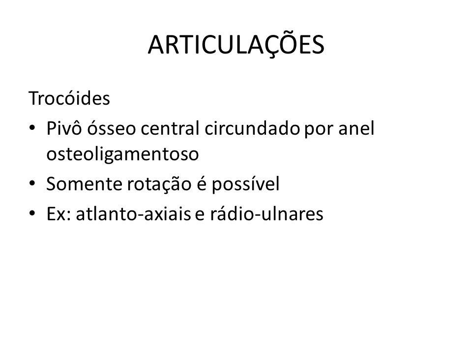 ARTICULAÇÕES Trocóides