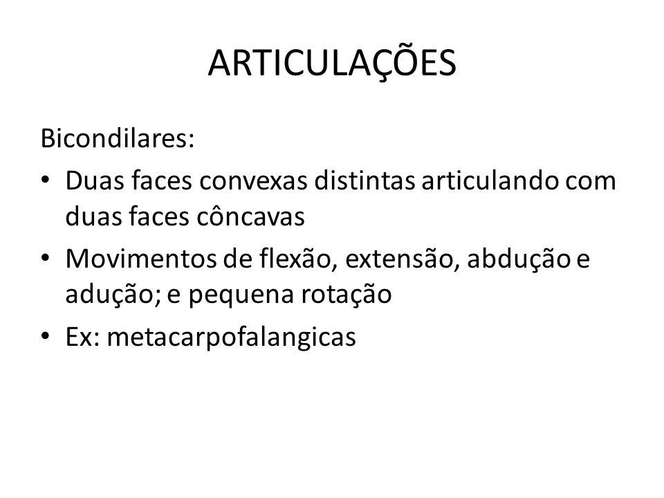 ARTICULAÇÕES Bicondilares: