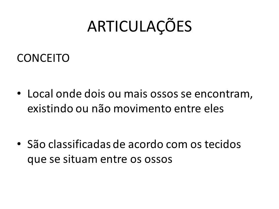 ARTICULAÇÕES CONCEITO