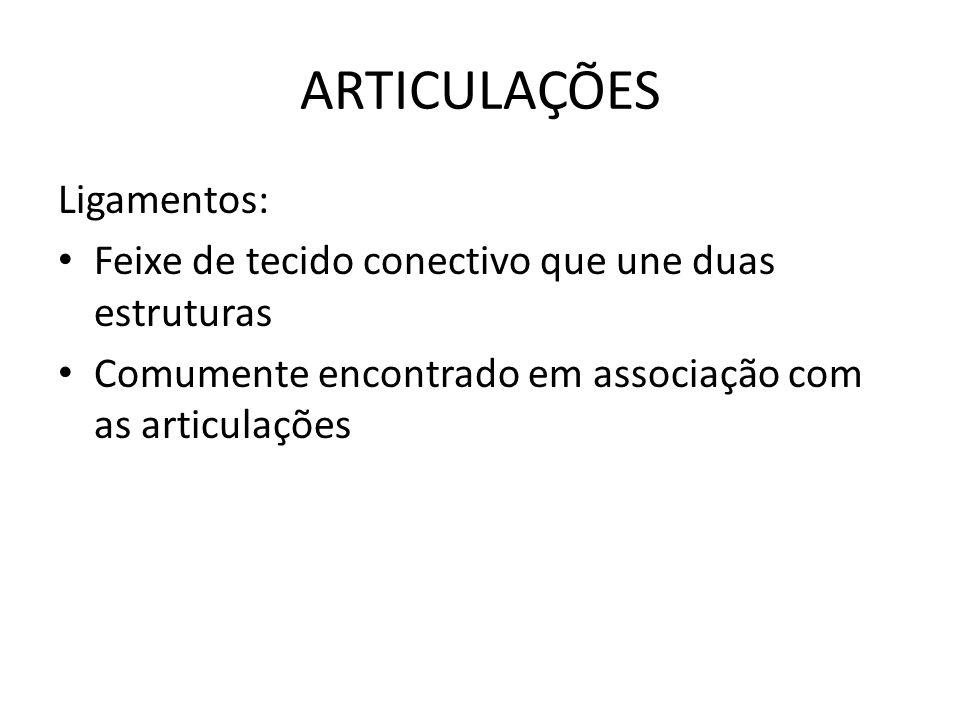 ARTICULAÇÕES Ligamentos: