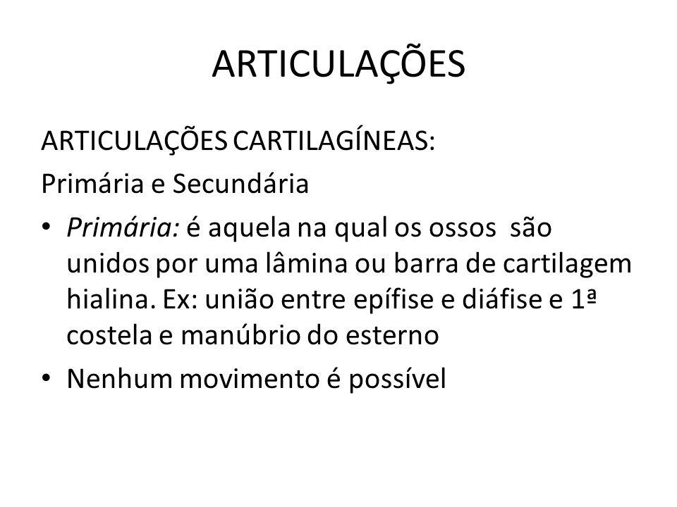 ARTICULAÇÕES ARTICULAÇÕES CARTILAGÍNEAS: Primária e Secundária