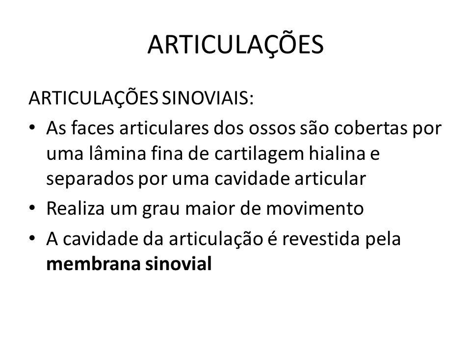 ARTICULAÇÕES ARTICULAÇÕES SINOVIAIS: