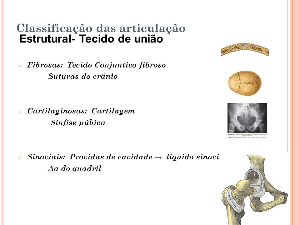 Classificação das articulação Estrutural- Tecido de união