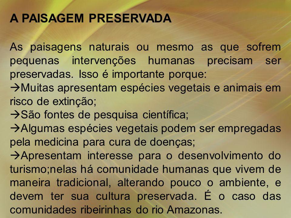 A PAISAGEM PRESERVADA As paisagens naturais ou mesmo as que sofrem pequenas intervenções humanas precisam ser preservadas. Isso é importante porque:
