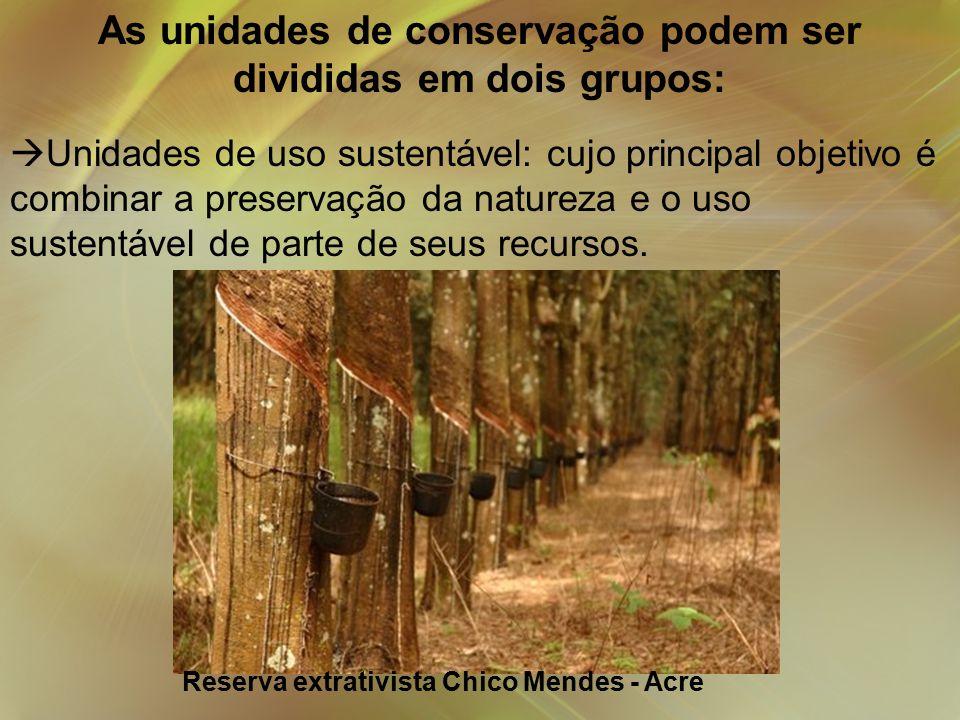 As unidades de conservação podem ser divididas em dois grupos: