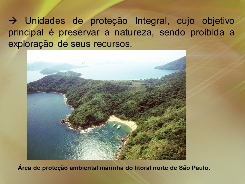  Unidades de proteção Integral, cujo objetivo principal é preservar a natureza, sendo proibida a exploração de seus recursos.