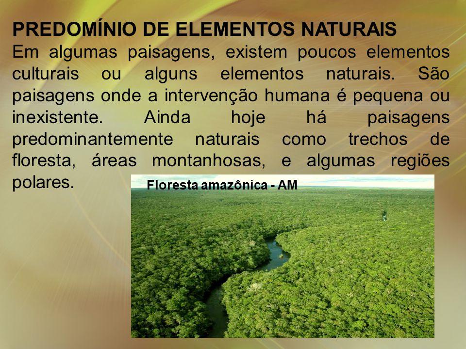 PREDOMÍNIO DE ELEMENTOS NATURAIS