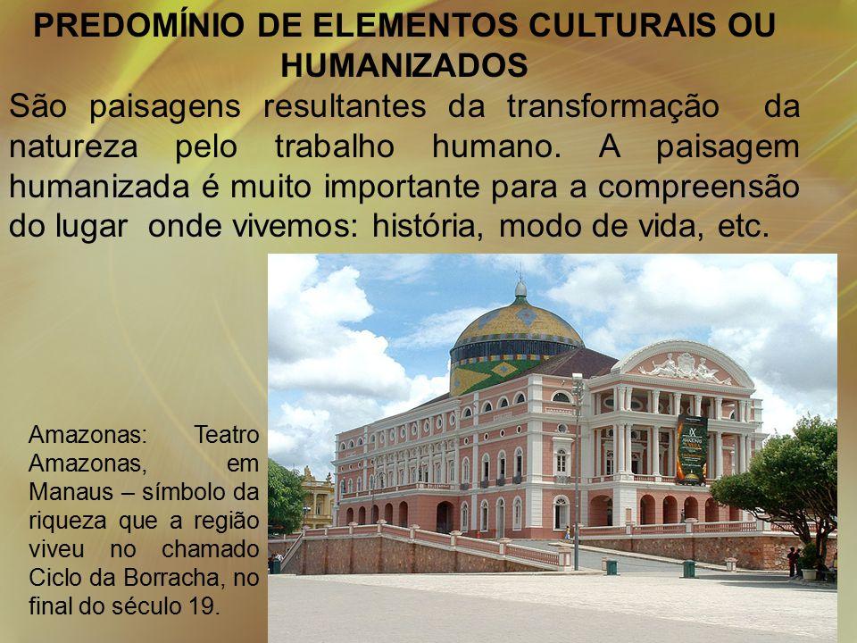 PREDOMÍNIO DE ELEMENTOS CULTURAIS OU HUMANIZADOS