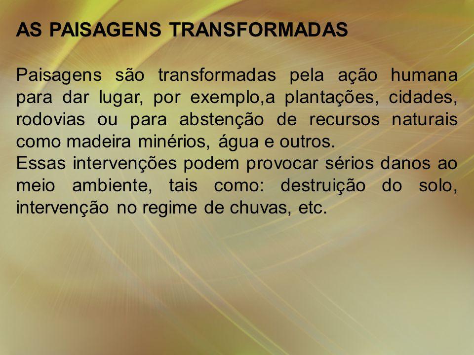 AS PAISAGENS TRANSFORMADAS