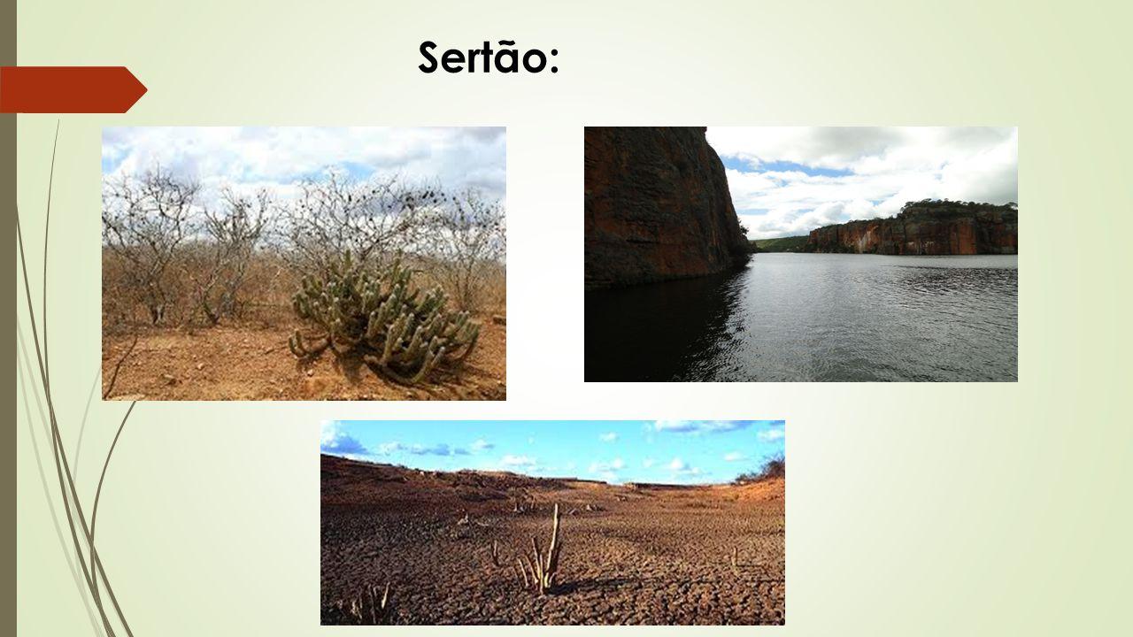 Sertão:
