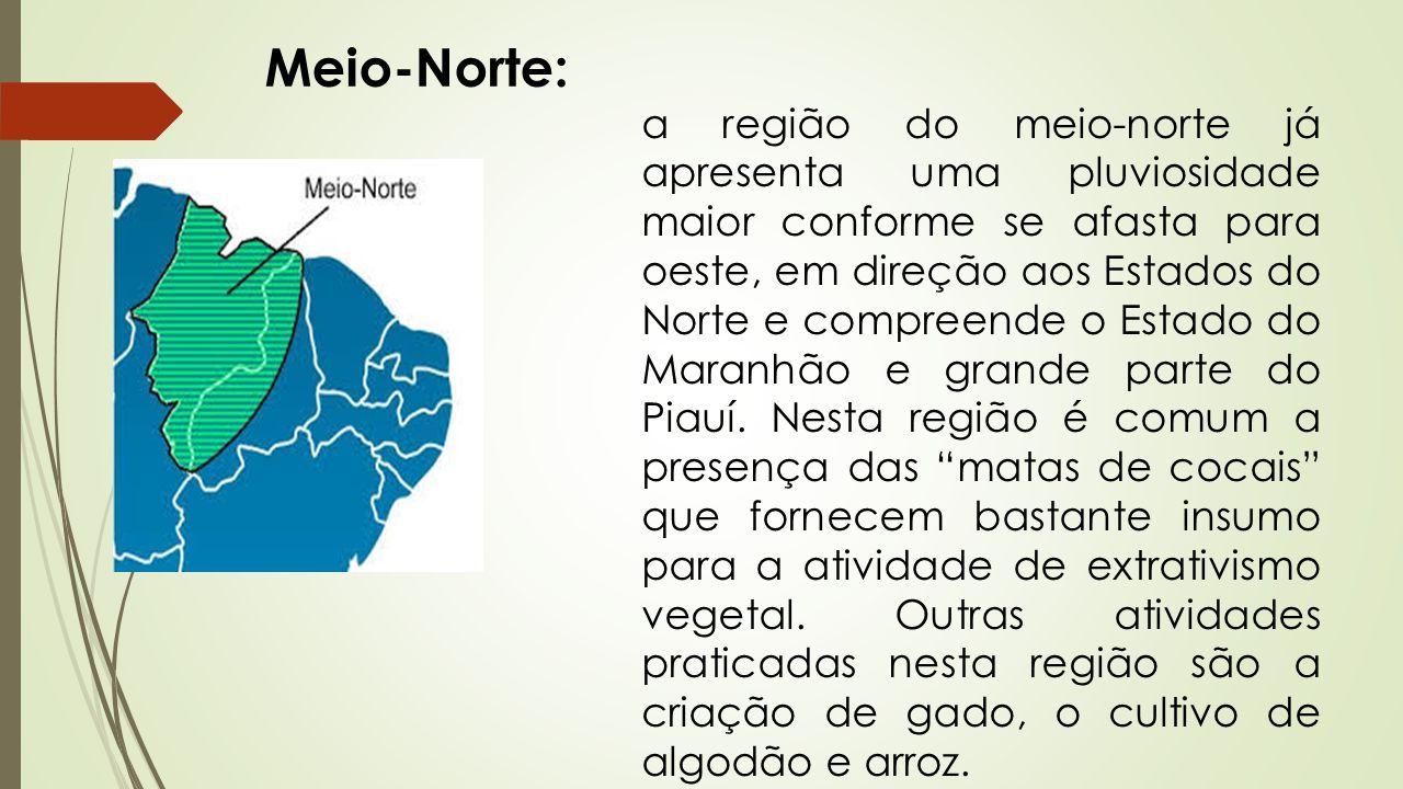 Meio-Norte: