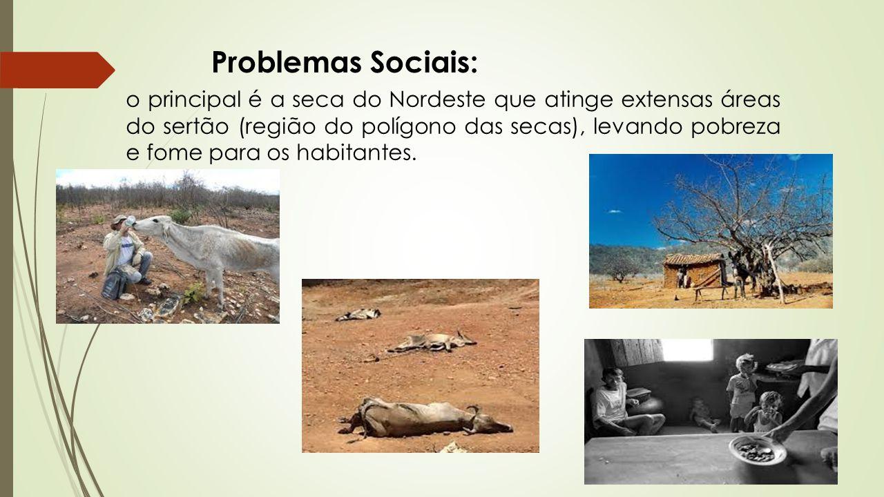Problemas Sociais: