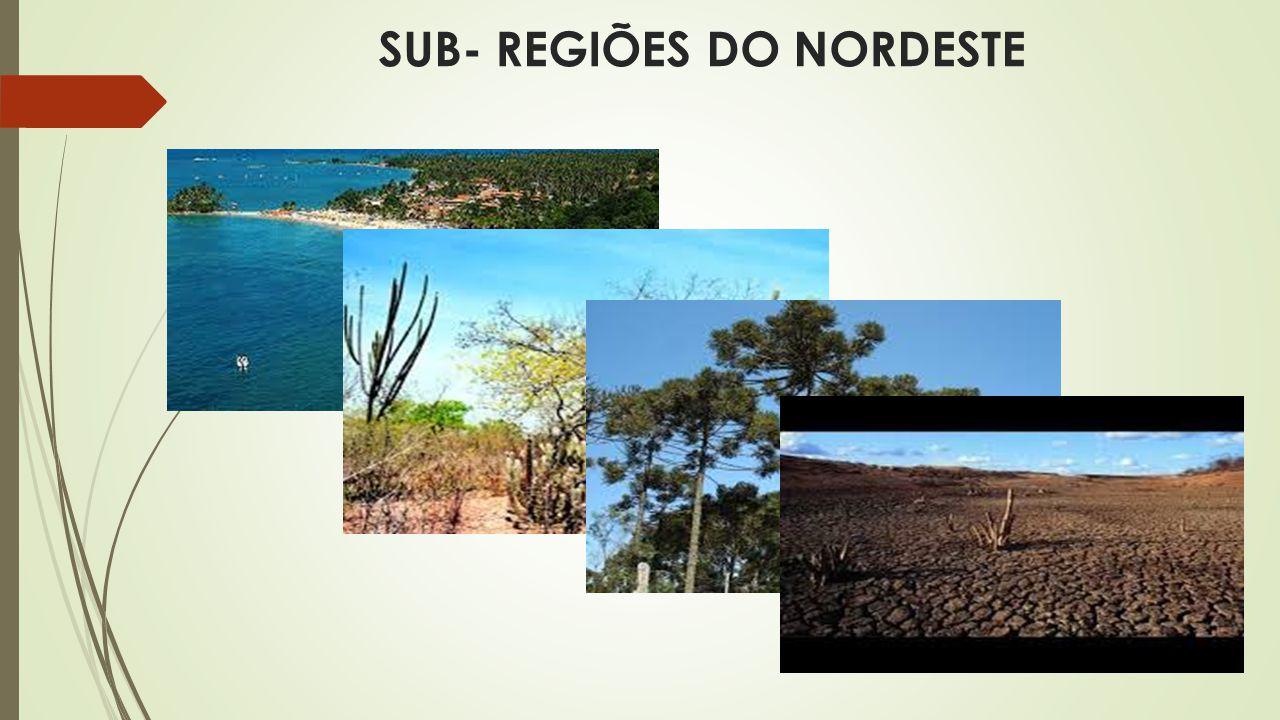 SUB- REGIÕES DO NORDESTE