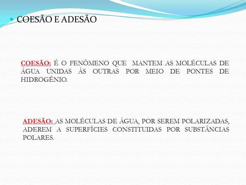 COESÃO E ADESÃO COESÃO: É O FENÔMENO QUE MANTEM AS MOLÉCULAS DE ÁGUA UNIDAS ÀS OUTRAS POR MEIO DE PONTES DE HIDROGÊNIO.