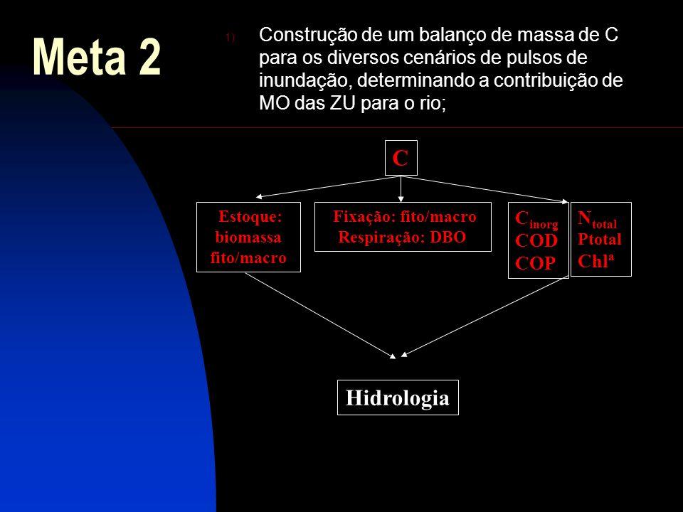 Estoque: biomassa fito/macro