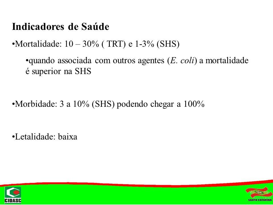 Indicadores de Saúde Mortalidade: 10 – 30% ( TRT) e 1-3% (SHS)