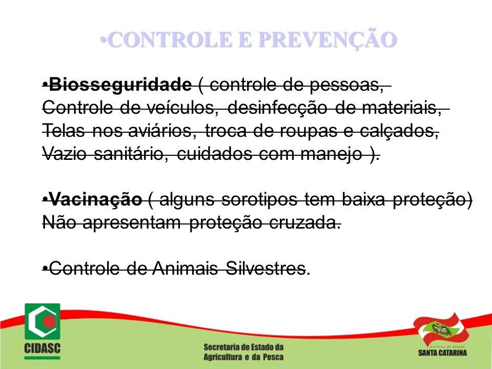 CONTROLE E PREVENÇÃO Biosseguridade ( controle de pessoas,