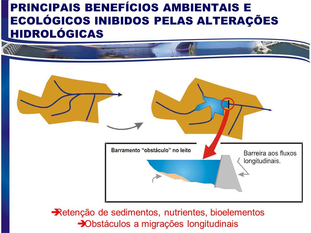PRINCIPAIS BENEFÍCIOS AMBIENTAIS E ECOLÓGICOS INIBIDOS PELAS ALTERAÇÕES HIDROLÓGICAS
