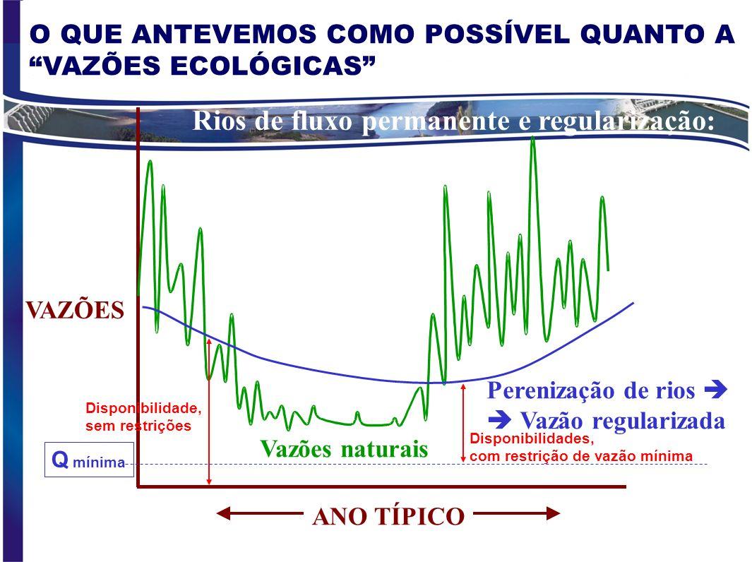 Rios de fluxo permanente e regularização: