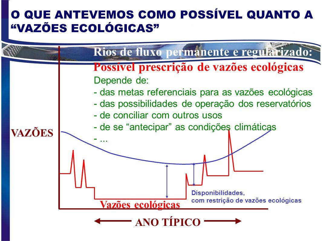 Rios de fluxo permanente e regularizado: