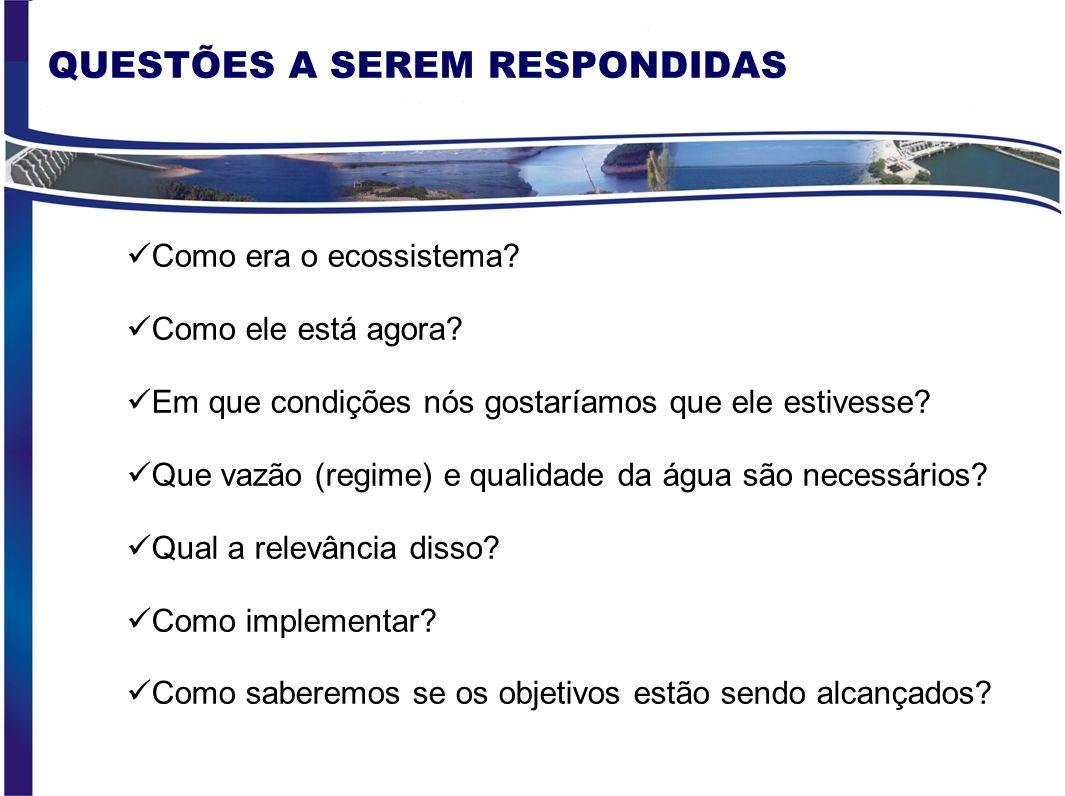 QUESTÕES A SEREM RESPONDIDAS
