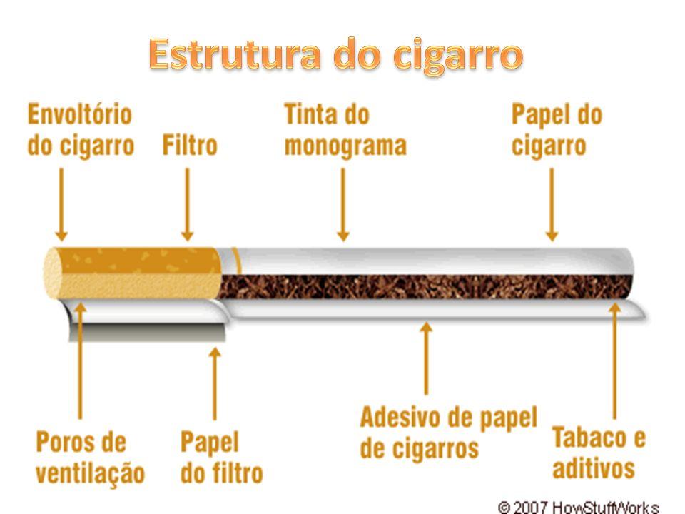 Estrutura do cigarro