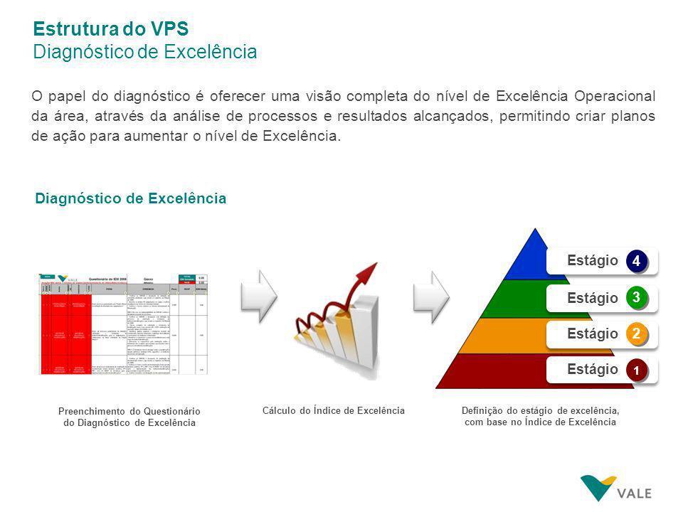 Estrutura do VPS Diagnóstico de Excelência