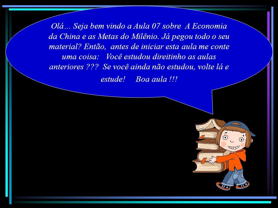 Olá… Seja bem vindo a Aula 07 sobre A Economia da China e as Metas do Milênio.