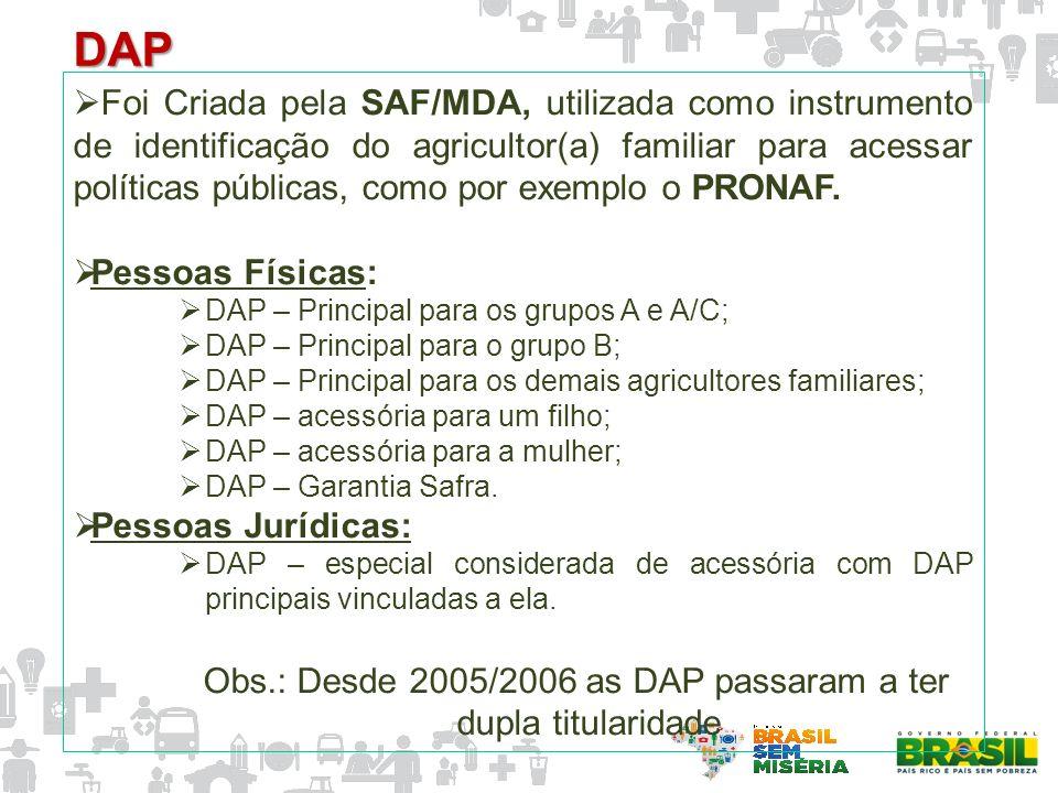 Obs.: Desde 2005/2006 as DAP passaram a ter dupla titularidade