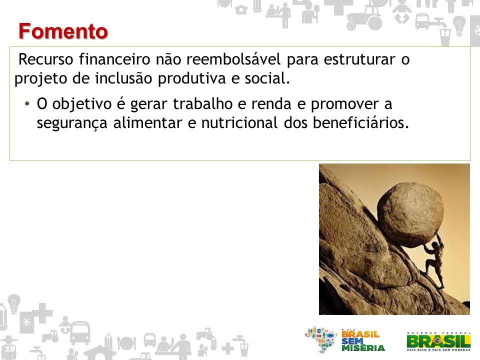 Fomento Recurso financeiro não reembolsável para estruturar o projeto de inclusão produtiva e social.