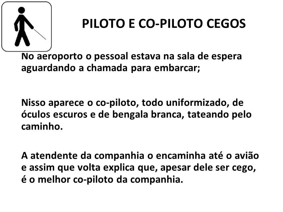 PILOTO E CO-PILOTO CEGOS