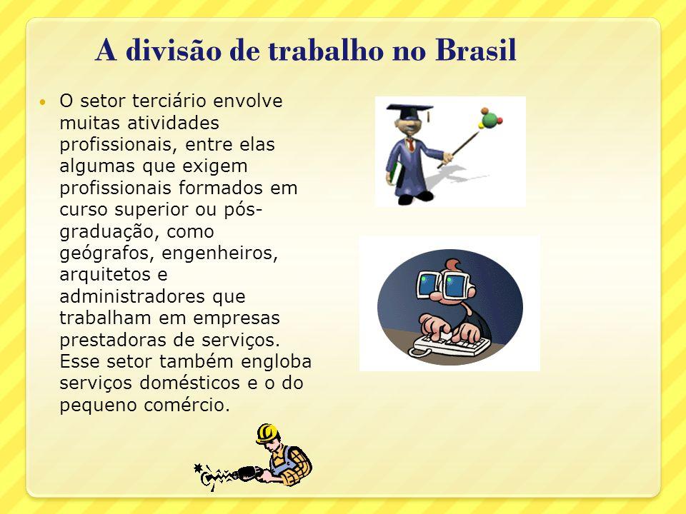 A divisão de trabalho no Brasil
