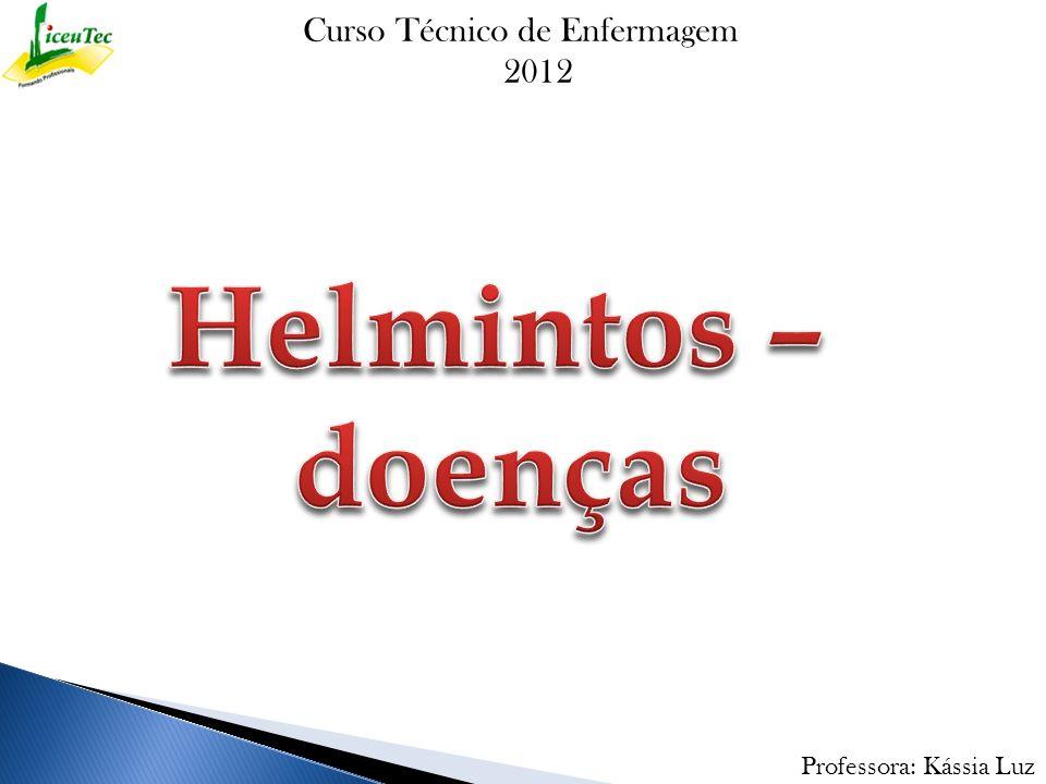 Helmintos – doenças Curso Técnico de Enfermagem 2012