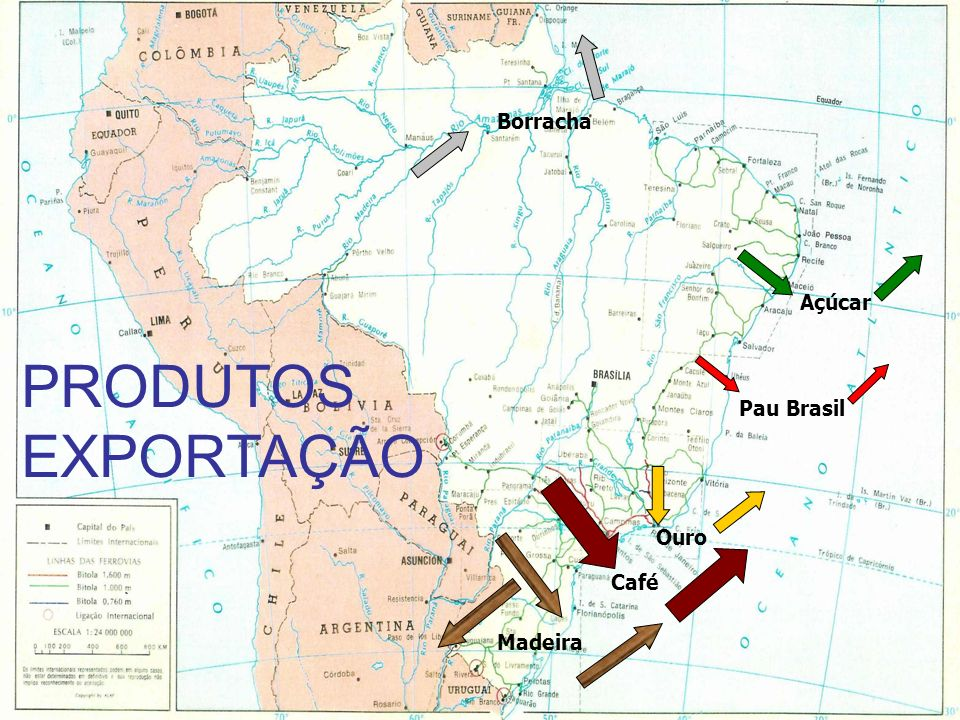 Borracha Açúcar PRODUTOS EXPORTAÇÃO Pau Brasil Ouro Café Madeira