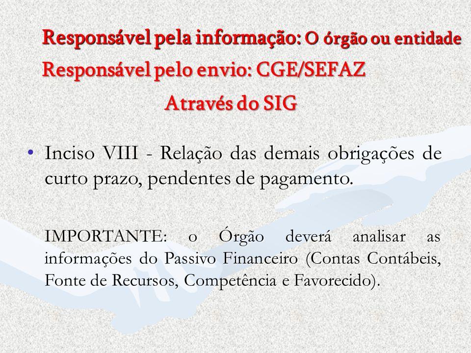Responsável pela informação: O órgão ou entidade