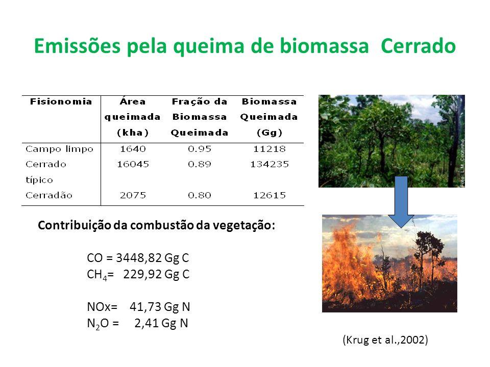 Emissões pela queima de biomassa Cerrado