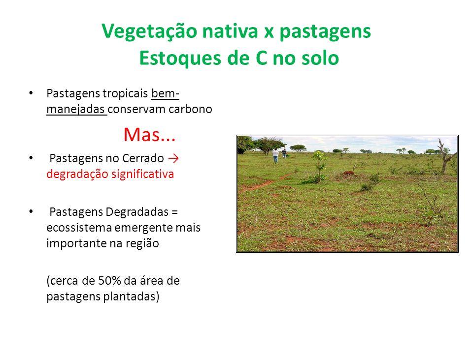 Vegetação nativa x pastagens Estoques de C no solo