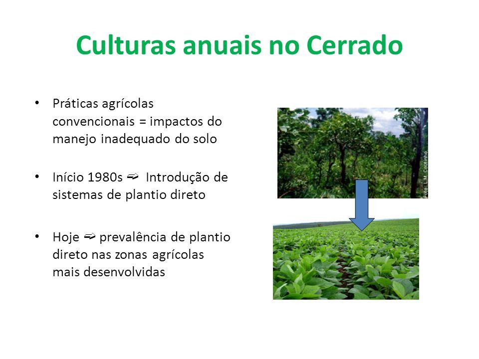 Culturas anuais no Cerrado